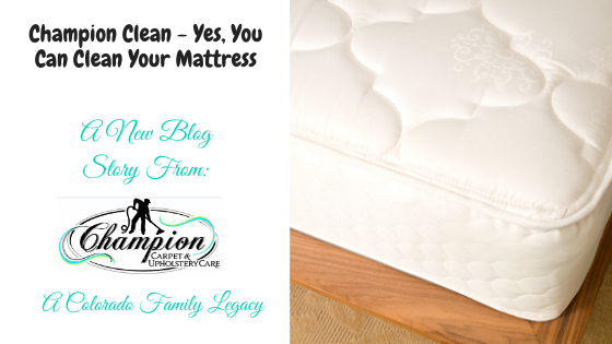 Champion Clean - Yes, You Can Clean Your Mattress