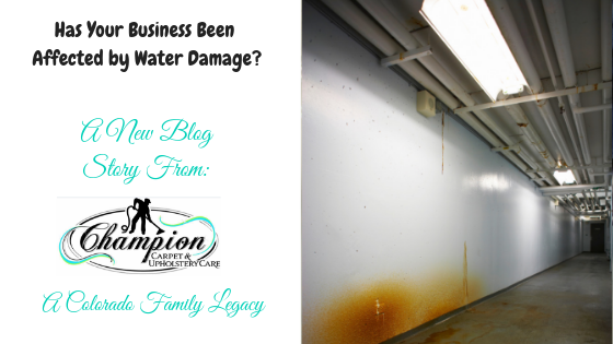 Has Your Business Been Affected by Water Damage?